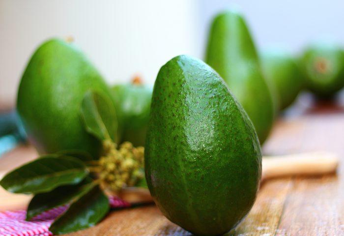 Diferentes tipos de abacates – safras e receitas
