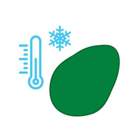 Resfriado na geladeira 10º
